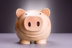 Porcelaine porcin à l'arrière-plan gris rouge Photographie stock libre de droits