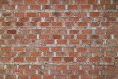 Porcelaine rouge de mur de briques Photo stock