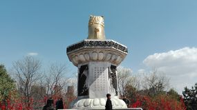 Porcelaine Tang Hibiscus Garden de Xi'an photos libres de droits