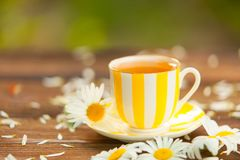 Porcelainl cup with green tea on table Royalty Free Stock Images