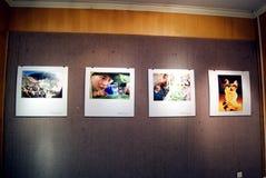 Porcelana de Shenzhen: exposição da fotografia Fotos de Stock Royalty Free