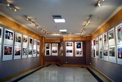 Porcelana de Shenzhen: exposição da fotografia Fotografia de Stock Royalty Free