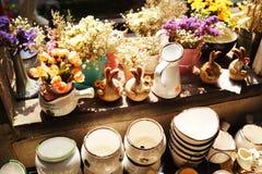 Porcelana e planta Imagens de Stock Royalty Free