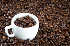 Porcelanowa filiżanka z kawowymi fasolami Obraz Stock