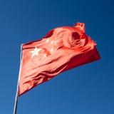 porcelanowa flagi dostępny okulary stylu wektora Fotografia Stock