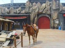 Porcelanowa Jinzhou Międzynarodowa Ogrodnicza ekspozycja obrazy stock