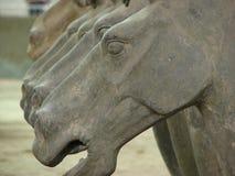porcelanowa końska terakota Zdjęcia Royalty Free