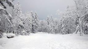 Porcelanowy Śnieżny miasteczko Obraz Royalty Free