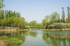 Porcelanowy Azja, Pekin Olimpijski lasu park, ogrodowy landscapeï ¼ Œ Zdjęcie Royalty Free