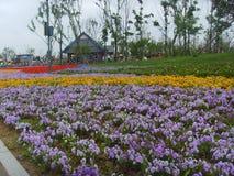 Porcelanowy Jinzhou Expositionï ¼  Międzynarodowy Ogrodniczy kwiat Fotografia Stock