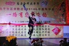 Porcelanowy Kung Fu noży Długi występ Zdjęcia Royalty Free