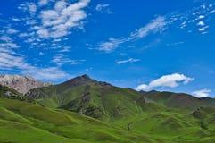 porcelanowy plateau Xinjiang Fotografia Stock