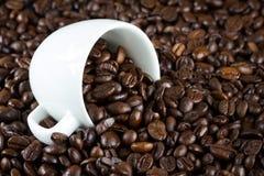 Porcelanowy puchar z kawowymi fasolami Obraz Stock