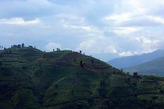 Porcelanowy ` s Yunnan prowinci podróżny ` 1 Zdjęcia Royalty Free