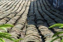 porcelanowy Shenzhen zdjęcie stock