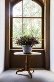 Porcelany flowerbed w gzhel stylu z dzikimi śródpolnymi kwiatami Zdjęcie Royalty Free