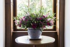 Porcelany flowerbed w gzhel stylu z dzikimi śródpolnymi kwiatami Obrazy Stock
