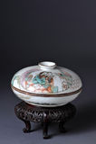 Porcellana cinese antica Immagine Stock