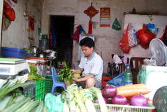 Porcellana di Shenzhen: deposito di verdure Fotografie Stock Libere da Diritti