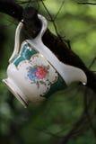 Porcellana nel legno Immagine Stock