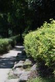 Porcellana soleggiata di estate della bella strada della roccia fotografia stock libera da diritti