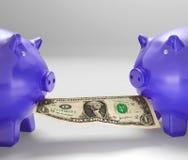 Porcellini salvadanaio che mangiano soldi che mostrano consiglio finanziario Fotografia Stock Libera da Diritti