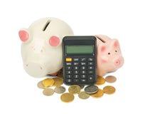 Porcellini salvadanaio con le monete ed il calcolatore Fotografia Stock