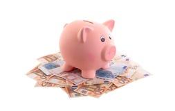 Porcellino salvadanaio circondato dalle euro note Fotografie Stock Libere da Diritti