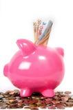 Porcellino salvadanaio con gli euro Immagine Stock Libera da Diritti