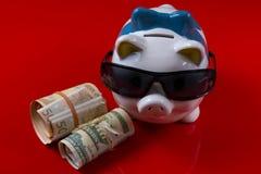 Porcellino salvadanaio con i contanti neri dei rotoli e degli occhiali da sole Fotografie Stock Libere da Diritti