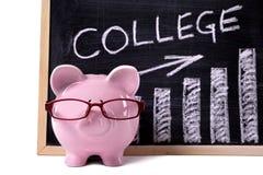 Porcellino salvadanaio con il grafico di risparmio o delle tasse dell'istituto universitario Immagine Stock Libera da Diritti