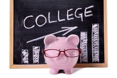 Porcellino salvadanaio con il grafico di risparmio o delle tasse dell'istituto universitario Immagini Stock Libere da Diritti
