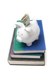 Porcellino salvadanaio con la banconota in dollari che attacca fuori su una pila di libri Fotografie Stock