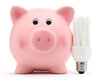 Porcellino salvadanaio con la lampada economizzatrice d'energia su fondo bianco Immagini Stock