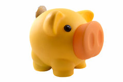 Porcellino salvadanaio con la moneta Fotografia Stock