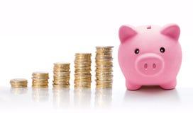 Porcellino salvadanaio con le euro pile della moneta - concetto di aumento Immagini Stock Libere da Diritti