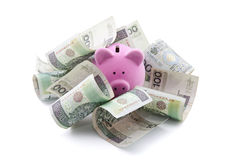 Porcellino salvadanaio con soldi polacchi. Fotografia Stock