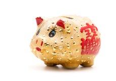 Porcellino salvadanaio dell'oro  Immagine Stock Libera da Diritti
