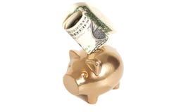 Porcellino salvadanaio dorato con un dollaro Fotografia Stock