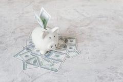Porcellino salvadanaio e dollari di mucchio Immagini Stock Libere da Diritti