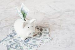 Porcellino salvadanaio e dollari di mucchio Fotografia Stock Libera da Diritti