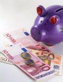 Porcellino salvadanaio e euro - immagine di riserva Immagini Stock Libere da Diritti