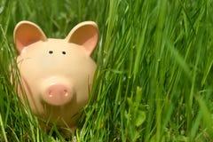 Porcellino salvadanaio in erba verde Fotografia Stock
