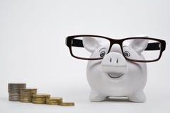 Porcellino salvadanaio felice con le monete Fotografia Stock