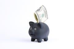 Porcellino salvadanaio nero con cento dollari di fattura che cade nella scanalatura su un fondo bianco dello studio Immagini Stock