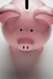 Porcellino salvadanaio rosa che mostra la scanalatura di moneta Fotografie Stock Libere da Diritti