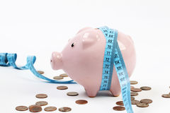Porcellino salvadanaio rosa con il misurare-nastro ed intorno molto ai penny su fondo bianco Fotografie Stock Libere da Diritti