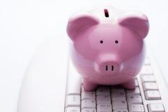 Porcellino salvadanaio rosa su una tastiera di computer Immagini Stock Libere da Diritti
