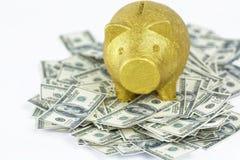 Porcellino salvadanaio su un mucchio di 100 note del dollaro Immagini Stock