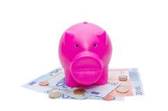Porcellino salvadanaio sull'euro banconota e monete Fotografia Stock Libera da Diritti